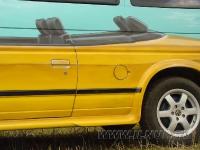 аэрография на VW Multivan