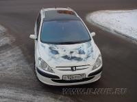 аэрография на капоте Peugeot 307