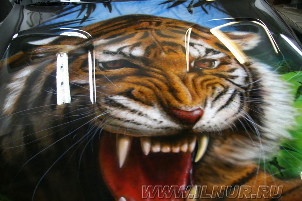 аэрография на капоте тигр улыбающийся из кустов