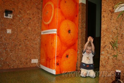 «Апельсин в квадрате» аэрография на холодильнике 2007 г.