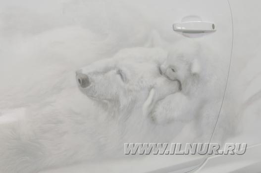 «Белая медведица» аэрография на Opel Corsa.  2010 г.
