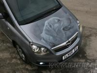 аэрография портрет собаки