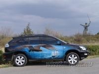 «Морской орел» аэрография на Lexus RX 300  2006 г.